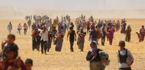 Yazidi refugees in Iraq in 2014